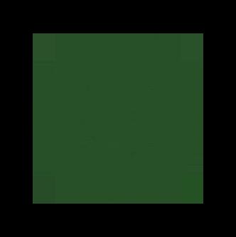 circle-Twin Leaf