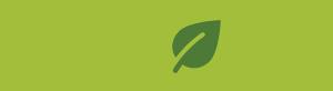 SSDN-website-logo-green-300